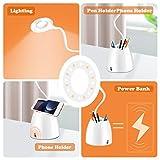Zoom IMG-2 amanka lampada da scrivania led