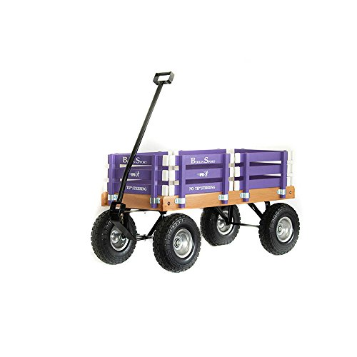 Buy Berlin Sport Wagon Toy, Purple
