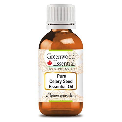 Olio essenziale di semi di sedano puro Greenwood (Apium graveolens) 100% naturale grado terapeutico distillato a vapore 10 ml (0,33 once)