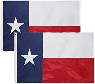 State 3x5 Feet Nylon Flag - Embroidered Oxford 210D Heavy Duty Nylon, Durable and Long Lasting - 4 Stitch Hemming. Vivid Colors & Fade Resistant. 3x5 Foot (Texas (2 Pack))