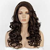 Brown Lace Front Wig Mixed Highlight Long Wavy Synthetic Wigs for Women Heat Resistant Fiber Side Part Wig