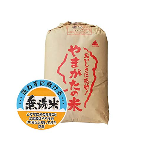 山形県産 無洗米 白米 もち米 ヒメノモチ 30kg 令和元年産 新米