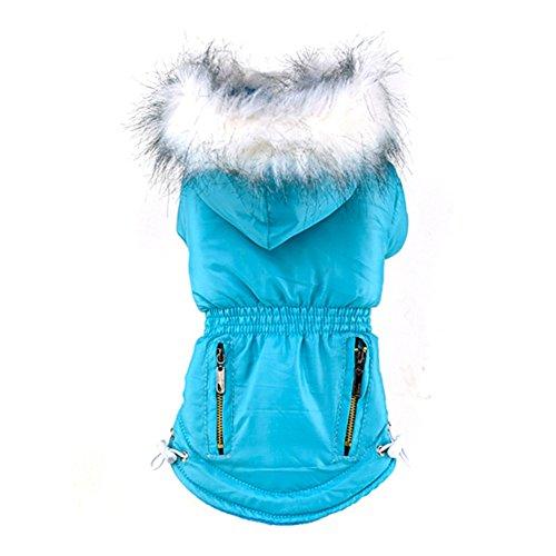 Wodery Pet Dog Winter Warm Coat Coton Veste Doudoune à Capuche Vêtements à Capuche pour Chien Chat, XS/S/M/L/XL/XXL
