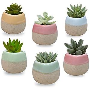 Mini Macetas Ceramica (Pack de 6) – 5.5 x 5.5 cm de Alto – Set Macetas Suculentas con Desagüé – Maceteros Decorativos…