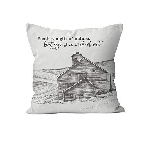 43LenaJon Fundas de almohada de lino y algodón, inspiradoras de granero gris, decoración de campo francés, decoración rústica del hogar, fundas de almohada