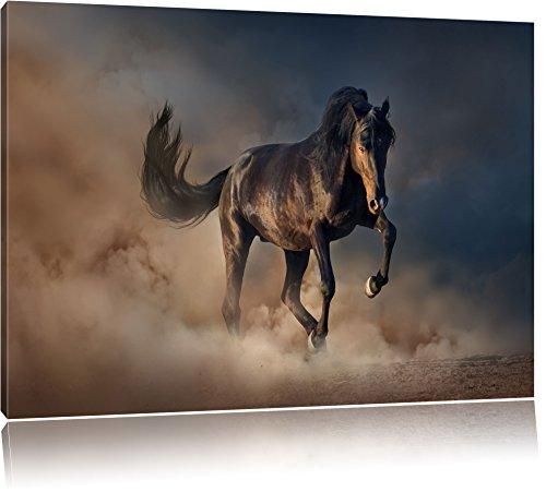 Schwarzes Pferd Format: 80x60 cm auf Leinwand, XXL riesige Bilder fertig gerahmt mit Keilrahmen, Kunstdruck auf Wandbild mit Rahmen, günstiger als Gemälde oder Ölbild, kein...
