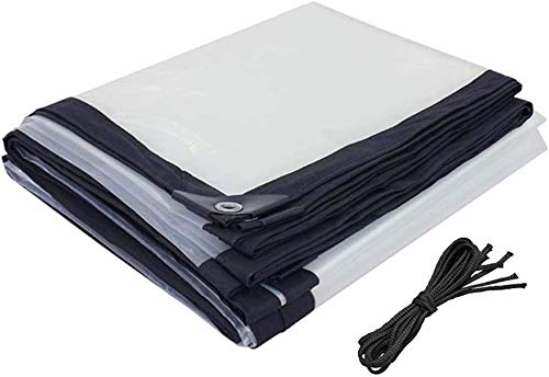 SACKDERTY Lona Transparente Impermeable de 20 pies x 20 pies, Lonas Transparentes con Ojales, a Prueba de Polvo a Prueba de Lluvia, Cubiertas de sábanas para el Suelo, para Invernadero de pl