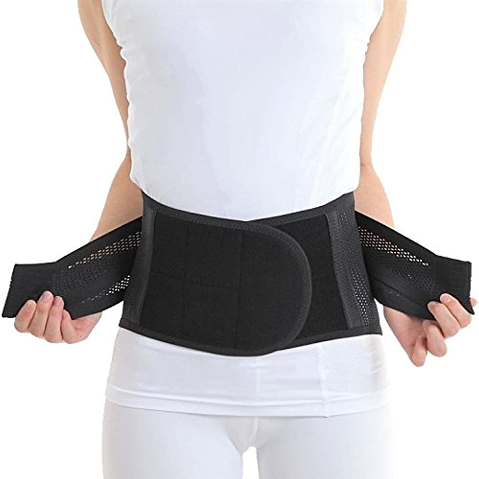 スキッパー順応性のある意図的つらい腰を強力サポート AIRLIFT 腰椎固定ベルト 腰用ハードコルセット 男女兼用ブラック (Lサイズ)