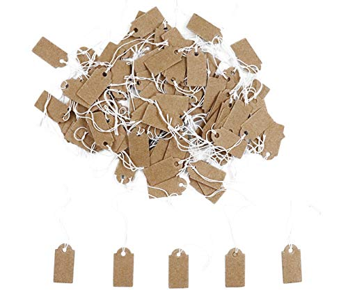 Floranea 100 Pcs Display Tags with Hanging String Mini Writable Blank Label Display Tags for Jewelry Store Price Marking Ornament Pricing Product Clothing Hanging Tags (Kraft)