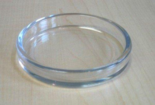 4 Stück Untersetzer für Klavier Flügel Möbel aus Kunststoff außen 70 mm Ø (Transparent)