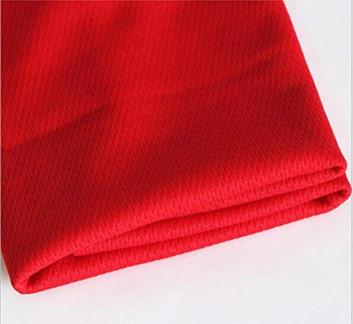 LASISZ Unisex Sports Quick Dry Bamboo Towel Summer Thin Gym Swimming Reusable Cool Face Small Towel for Heat Relief 65X28 cm,Red