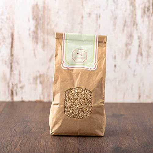 süssundclever.de® Bio Milchreis | vollkorn | Rundkornreis | 2 kg | unbehandelt | plastikfrei und ökologisch-nachhaltig abgepackt
