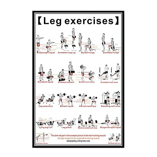 Póster del sistema de ejercicios de piernas, lienzo, arte de pared, tabla de anatomía muscular, pintura educativa para decoración de sala de estar, 50x75 cm x1 sin marco