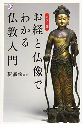 新書y カラー版 お経と仏像でわかる仏教入門 (新書y 324)