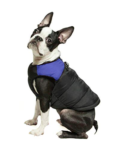 Gooby Padded Dog Vest - Blue, Large - Zip Up Dog Jacket Coat with D Ring Leash - Small Dog Sweater with Zipper Closure - Dog Clothes for Small Dogs Girl or Boy for Indoor and Outdoor Use