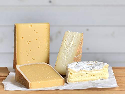 Probierpaket | Käseset 'Zum Wein & Bier' | 4x Käsesorten