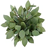 Greentime 8 Pack Artificial Eucalyptus Heart-Shaped Leaf Floral Stem Faux 13 Inches Greenery Eucalyptus Leaves for Bridal Wedding Bouquet Home Greenery Holiday Greens Decor