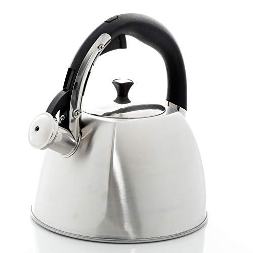 Mr. Coffee Belgrove 2.5 Quart Stainless Steel Tea Kettle, Silver