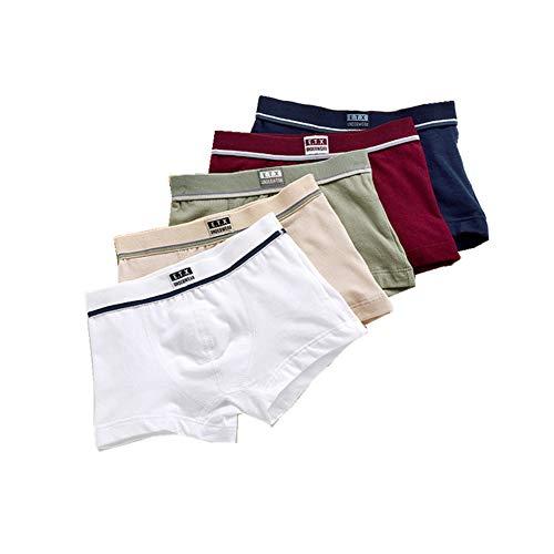 LanLan 5PCS / Set Niños Boy Calzoncillos de algodón Suave Boxer Ropa Interior para niños