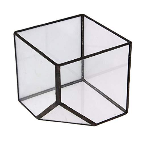 Tubayia Terrario geométrico de cristal para invernadero, maceta, maceta, para decoración del...