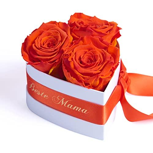 ROSEMARIE SCHULZ Heidelberg Für die Beste Mama der Welt 3 Infinity Rosen Herzbox zum Muttertag Geburtstag (Orange, 3 Rosen Für die Beste Mama der Welt)
