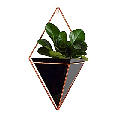 Aneil Large Hanging Planter Vase Air Plant Pot Wall Succulents Decor Container Geometric Characteristic Living Room Decorations, Black