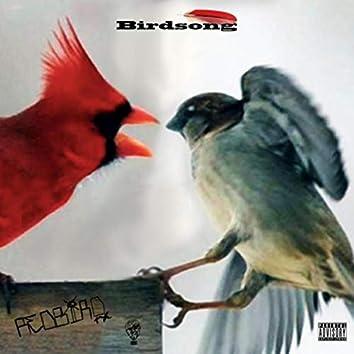 Birdsong (feat. Jkingxiii)