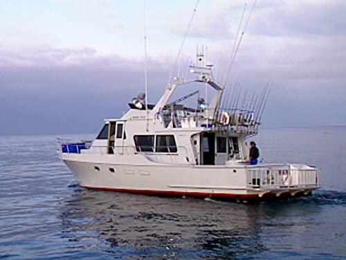 Saving Sea Bass: Inside the Hubbs-Sea World Hatchery