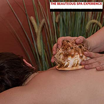 The Beauteous Spa Experience