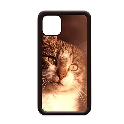 Animal Sentimental Cat Simpol Shoot - Carcasa para iPhone 12 Pro Max