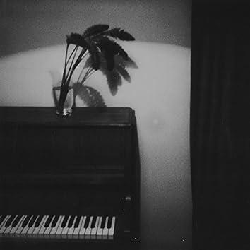 Little Bird's Song