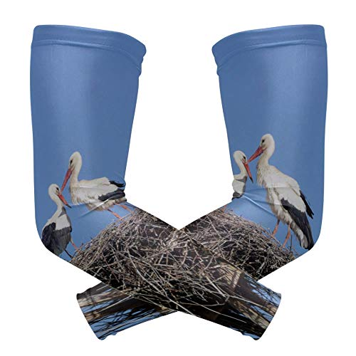 HAOLONGG Extra Long Sleeve Bird's Nest and Eggs Print Ice Silk Mens Long Sleeve Sun Teal Arm Sleeve Quick-Drying&Breathable Tattoo Arm Sleeves for Men for Unisex Outdoor 2pcs