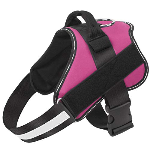 Puglifeharness Reviews