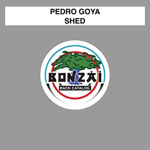 Pedro Goya