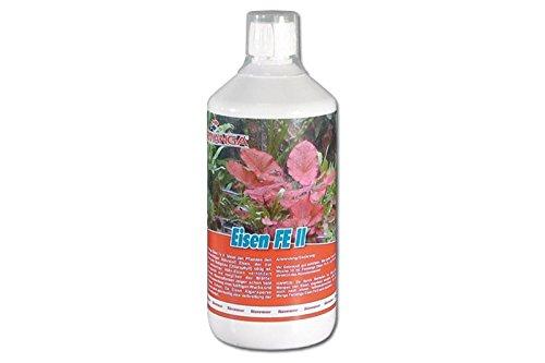 Femanga Eisen Fe2 1000 ml