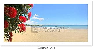 Barewalls Panoramic View of Pohutukawa Red Flowers Blossom On December Paper Print Wall Art (6in. x 12in.)
