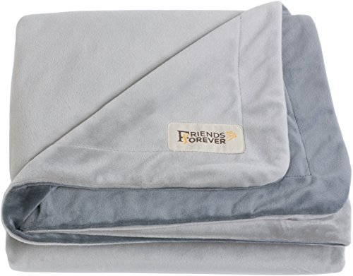 Friends Forever Durable Dog Blanket for Couch Protection | Two Tone...