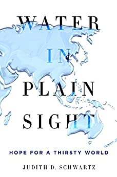 Water in Plain Sight: Hope for a Thirsty World by [Judith D. Schwartz]