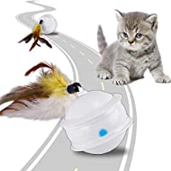 ACELIFE Cat Toys for Indoor Cats Interactive, Automatic 360 Degree Rotating Ball, 6 Speed Mode Cat T...