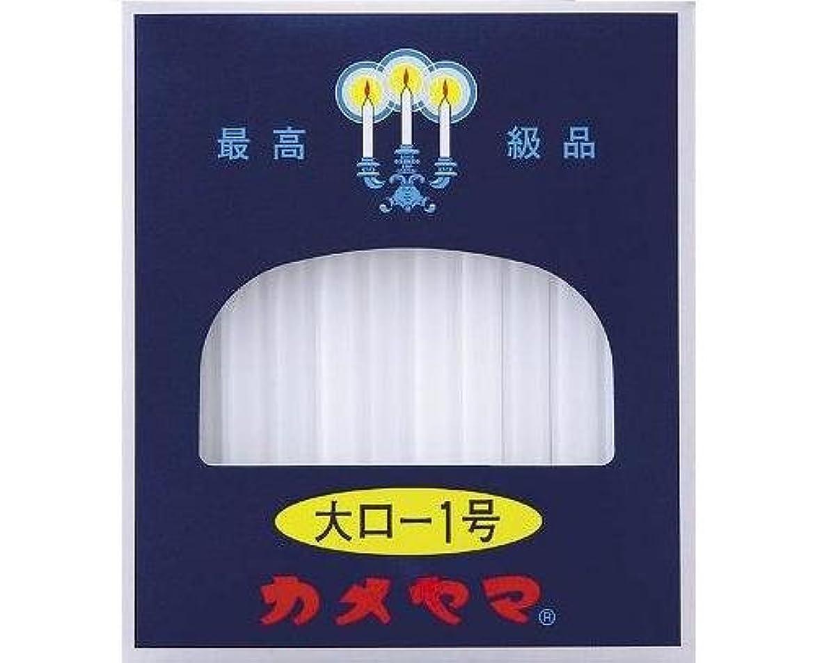 サンダー不愉快中古大ロ-ソク<1号> 225g