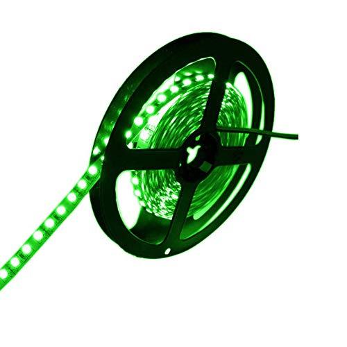 JOYLIT 12V Tiras LED Iluminación Verde 520-525nm, 5M Flexible 300LEDs SMD5050, IP20 No Impermeable Luces LED