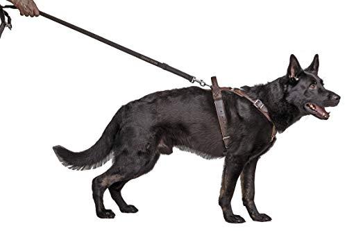 Dingo Gear Hundegeschirr aus Leder für Hunde, handgefertigt, HQ Dog Fashion, feine Bronze, M