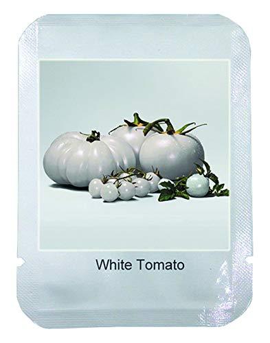 WEISSE TOMATE - grosse Fleischtomate - ca. 100 (!) Tomaten Samen/Pack
