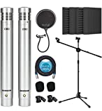 Samson C02 Pencil Condenser Microphones Pair for Vocals, Acoustic Guitars, Pianos, Overhead Drums Bundle with Blucoil 20-FT Balanced XLR Cable, Adjustable Mic Stand, and 4x 12' Acoustic Wedges