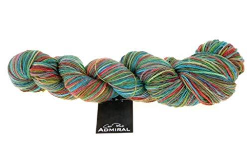 Schoppel Zauberball, Wolle, Admiral Katze Blooming Landschaften Sockenwolle, Mehrfarbig, Farbe