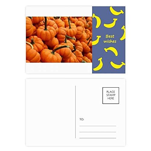 Foto-Postkarten-Set mit frischem Kürbisbild, Natur-Banane, 20 Stück