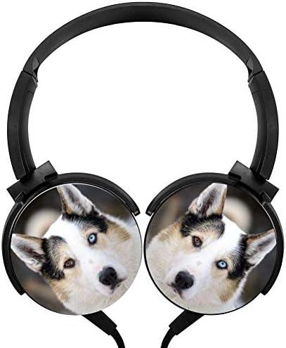 Top 10 Best siberian headset