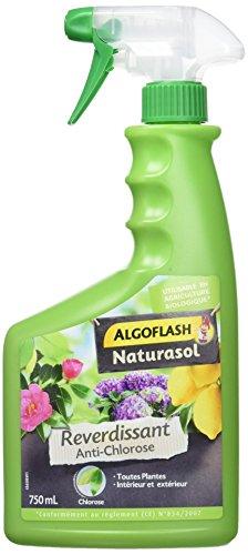 Algoflash Anticlorosis Reverdisante para Todas Las Plantas – Listo para Usar 750 ml, 750 litros, Verde, 12 x 7 x 26 cm, BIOCLOPRETAN