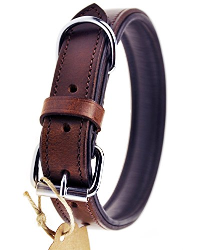 Schnüffelfreunde Hundehalsband aus Leder (XXL - 55-65cm, Braun)