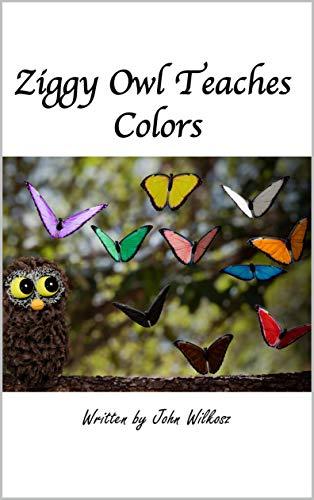 Ziggy Owl Teaches Colors (English Edition)